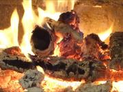 Watch free video Beethoven - Symphony No 1 and Fireplace in Macro