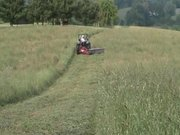 Watch free video Mowing Hay