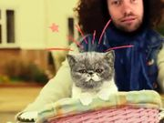 Watch free video Riding My Bike and Singing with My Cat