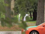 Watch free video Improv in Toronto Video: Dare to Fight?