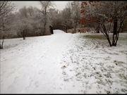 Watch free video Walking Through a Winter Wonderland