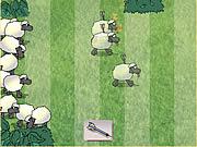 juego Sheep Dash