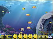 Play Growing fish Game
