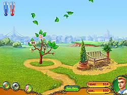 Money Tree game