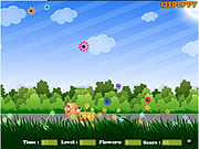 Flower Catcher game