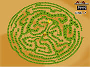 Maze Game - Game Play 1: Find The Chicken game