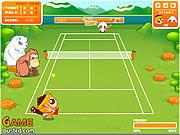 juego Crazy Tennis