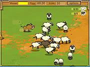 Play Kaban sheep Game