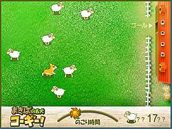 Sheep Shepherd game