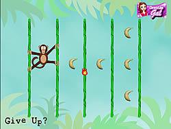 Jungle Spider Monkey game