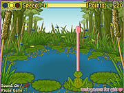 Froggie The Fly Catcher game