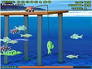Play Shark bait Game