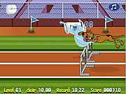 Scooby Doo Hurdle Race game