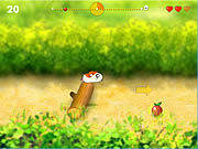 Play Running hamster Game