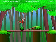 Squirrel Balance game