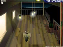 Tiger Moth game