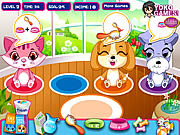 Play Pet shop caring Game
