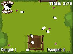 A Sheep Game game