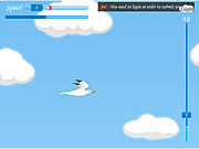 Play Seagull flight Game