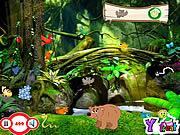 My Jungle game