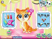 Pets Beauty Salon game