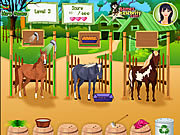 Horse Care Apprenticeships لعبة