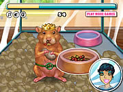 Play My tiny hamster Game