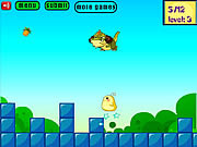 Play Greedy chicken Game