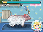 Clean Little Piggy game