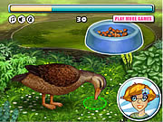 Play Lucky duck Game