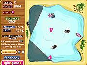 Play King pirate s treasure Game