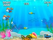 Buba Fish game