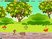 Play Family of squirrels Game