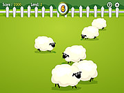 Play Count the sheep Game