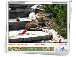 Hidden Mouse game