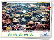 Play Hidden seahorses Game
