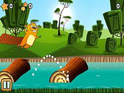 Beaver River Dance game