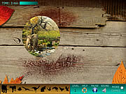 Hidden World: Animals game