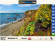 Play Sunny forest find numbers Game