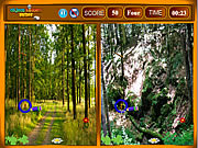 Forest Similarities game