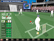 Play Cricket challenge Game
