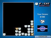 P-Cat Invasion game