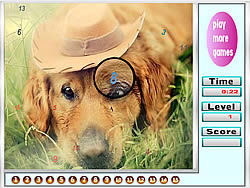 Melancholic dogs hidden numbers game