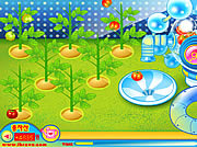 Play Sue tomato factory Game