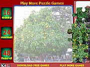 Orange Tree Jigsaw Puzzle game