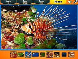 Ocean Pieces game