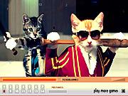 Kitties Hidden Numbers game