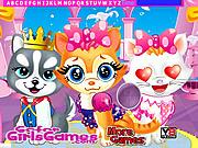 Pets Beauty Salon Hidden Game game