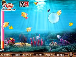 Match the fish pairs game