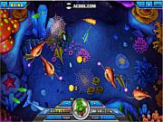 เล่นเกมฟรี Acool Fishing Master